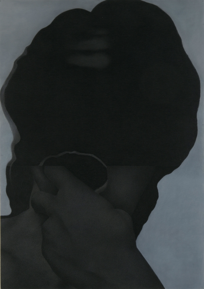 Mary Scott exhibition at CAST Tasma St. Mary Scott: Black Powder 2013. Charcoal and pastel on paper. 1520 x 1080mm